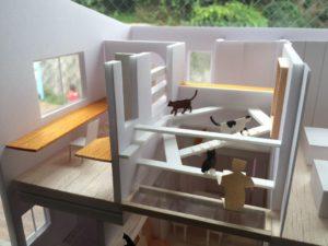 猫と建築社