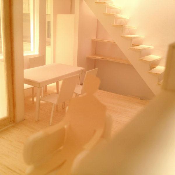 中庭で猫が遊ぶ家-階段下トイレ